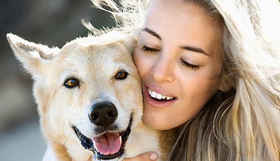 petsitting4u dog and woman