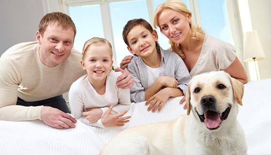 petsitting4u familiy