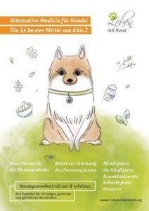Alternative Medizin für Hunde